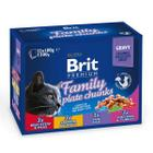 Корм для кошек Brit Семейное ассорти, 100 г
