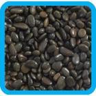 Грунт для аквариума Laguna 20621D, 2 кг, черный