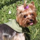 Охлаждающая косынка для собак Osso Fashion S