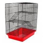 Клетка для грызунов Дарэлл ECO, размер 33х24х38см.